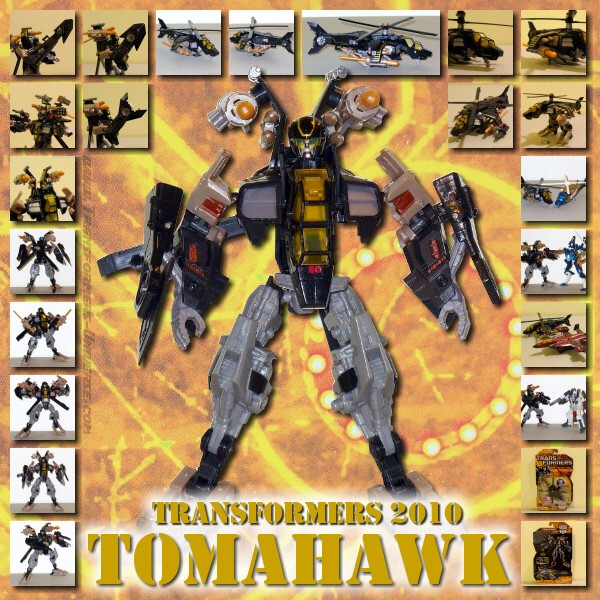 Hunt for the Decepticons  Tomahawk (2010)