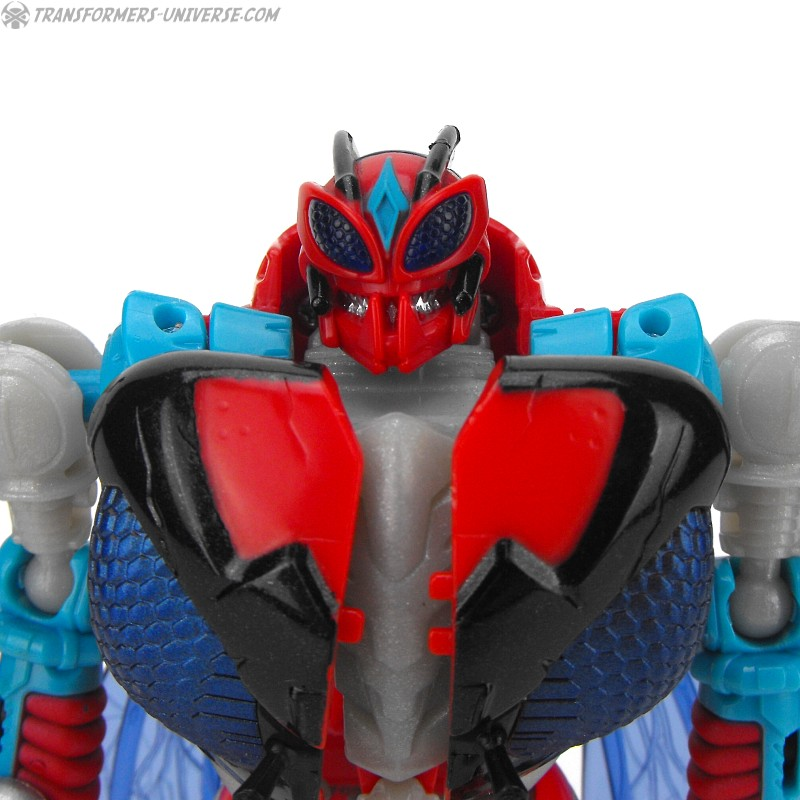 Botcon Exclusives Storm Rider (2015)