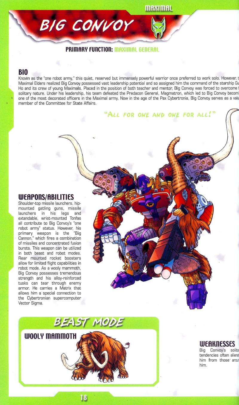 The Transformers Big Looker Storybook