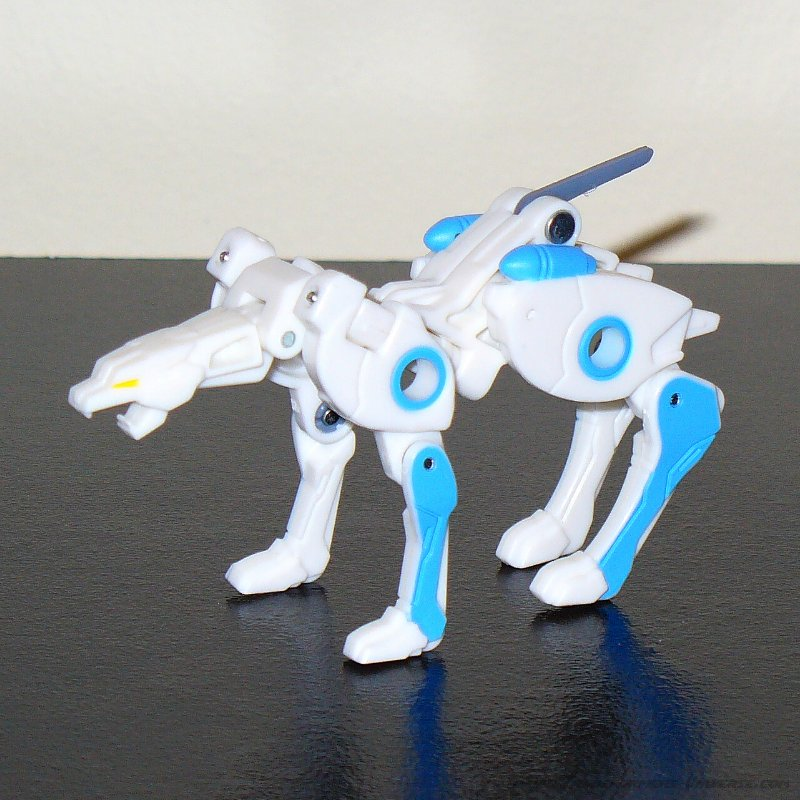 Botcon Exclusives Ravage (2010)